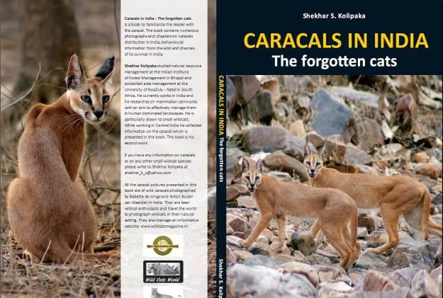 caracals3
