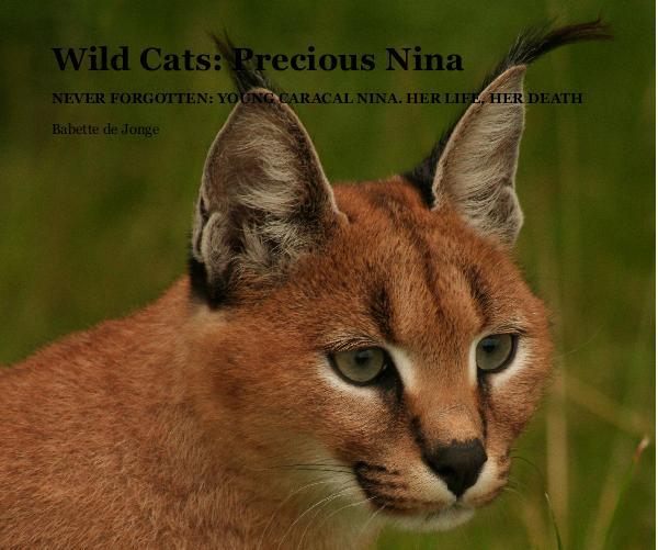 Precious caracal Nina